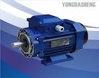 YDS1标准效率电动机