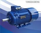 Y2 三相铸铁电动机